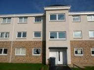new Flat in Sanderling, Lesmahagow...
