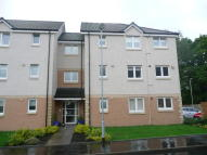 Flat in Mcphee Court, Hamilton...