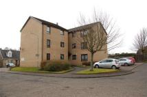 Flat to rent in Martin Court, Hamilton...