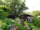 Cherven house