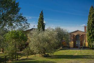 Property with olive