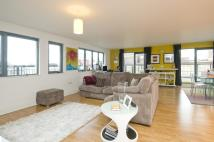 Colour House Flat to rent
