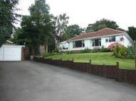 Bungalow for sale in Eyre Mount, Skegby Lane...
