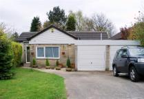 Milton Drive Bungalow for sale
