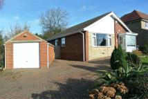 Detached Bungalow in Woodsetts Road...