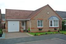 Detached Bungalow for sale in Oakwood Mews, WORKSOP...