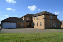 4 bedroom Detached property in Conquest Drove, Farcet...