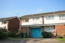 Terraced property to rent in Field Place, Liphook