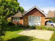 Bungalow to rent in Malthouse Lane West End...