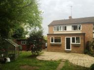 3 bedroom semi detached house to rent in BURR HILL LANE CHOBHAM...