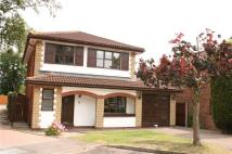 4 bed Detached house to rent in Redcote Drive...