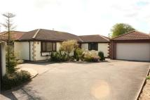 Bungalow for sale in Villa Close, Branston...