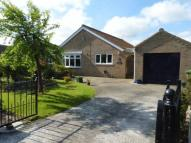 Otter Avenue Detached Bungalow for sale