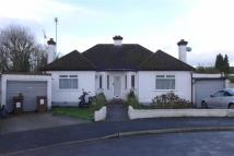 Detached Bungalow in Brunswick Close, Pinner...