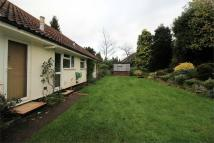 Detached Bungalow to rent in West Byfleet, Surrey
