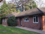 Detached Bungalow to rent in Woking, Surrey