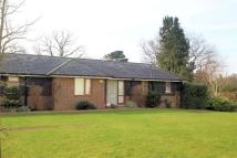 2 bed Semi-Detached Bungalow in St Johns Lodge, St Johns...