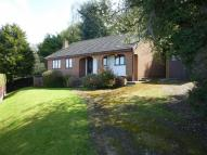 Detached Bungalow for sale in Fron Drive, Holywell