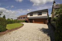 4 bed Detached property for sale in Mold Road, Mynydd Isa