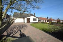 3 bed Detached Bungalow for sale in Mold Road, Connah's Quay