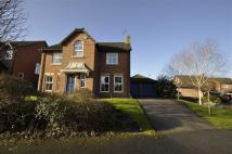 Detached property for sale in Rhodfa Cilcain, Mold