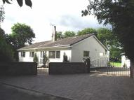 3 bedroom Detached Bungalow in Hafod Moor, Gwernaffield