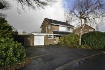 Detached property for sale in St Peters Park, Northop