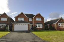 5 bed Detached property in LLys Y Graig, Bryn Baal