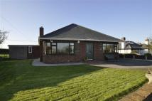Detached Bungalow for sale in Lon-y-plas...