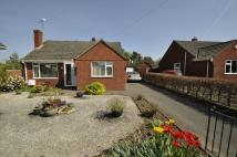 Detached Bungalow in Park View, Northop