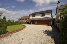Detached home for sale in Mold Road, Mynydd Isa
