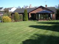 3 bed Detached Bungalow for sale in Llys Saron, Brynford