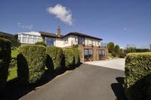 Detached Bungalow for sale in Pentre Road...