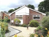 Detached Bungalow in Sebring Ave, Northop Hall
