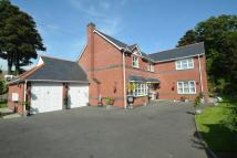 Detached home for sale in Mold Road, Wylfa Hill