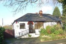 2 bed Bungalow to rent in 2 bedroom Semi Detached...