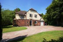 5 bedroom Detached property for sale in Brandon Avenue...