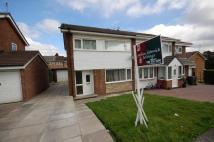 Lee Dale Close semi detached house to rent
