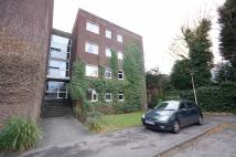 Flat to rent in Beech House...