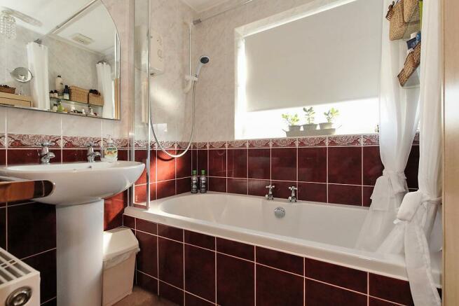 Pet-Bath.jpg