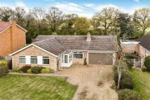 Detached Bungalow for sale in Parkstone Close