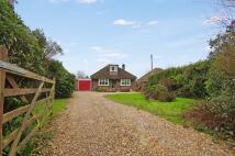 Detached Bungalow for sale in Pondtail Road, Horsham