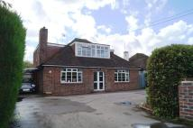 Cottingham Avenue Detached Bungalow for sale
