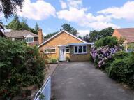4 bedroom Detached Bungalow in New Haw, Surrey