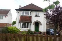 3 bedroom semi detached home in Warwick Avenue, Derby...