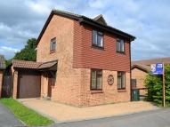 Detached house to rent in POUND HILL, Crawley