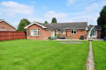 Detached Bungalow in Northgate, Crawley