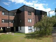 IFIELD Studio flat to rent