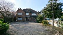 5 bedroom Detached home for sale in Sunray Avenue...
