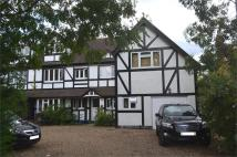 1 bed Flat to rent in Annexe...
